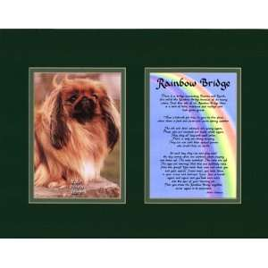 Rainbow Bridge Dog Memorial Wall Decor Poem Pet Saying