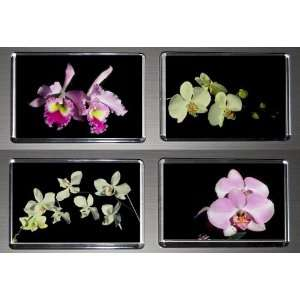 Gift Boxed Set of 4 Fridge Magnets Orchids 1  Kitchen