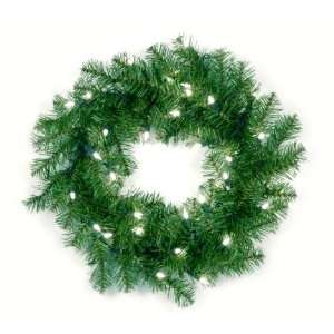 National Tree Company AP7 300 20W 20 Inch Aspen Spruce Wreath with 35