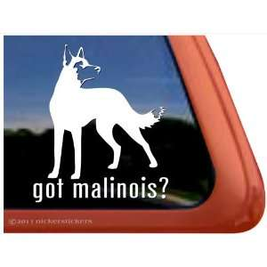 Got Malinois? ~ Belgian Malinois Vinyl Window Auto Decal