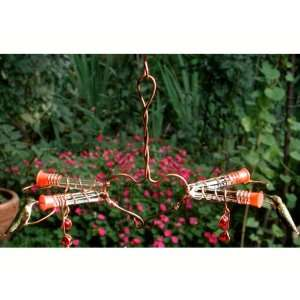 Birds Feeder (Bird Feeders) (Hummingbird Feeders )