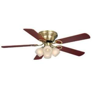 Vaxcel FN52267A C Zephyr 5 Blade Indoor Ceiling Fan in Antique Brass
